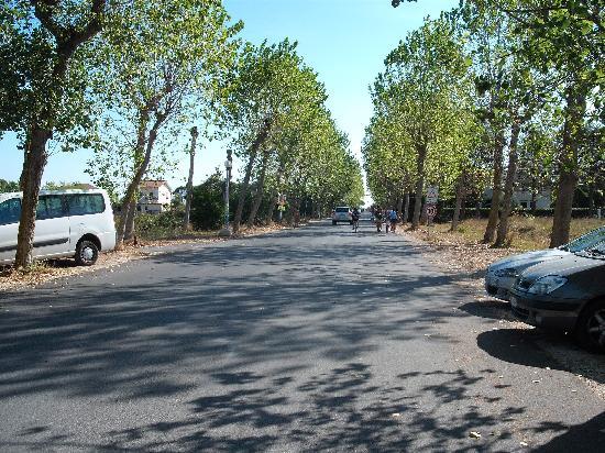 Numanablu Family Resort & Camping: il viale per raggiungere il mare