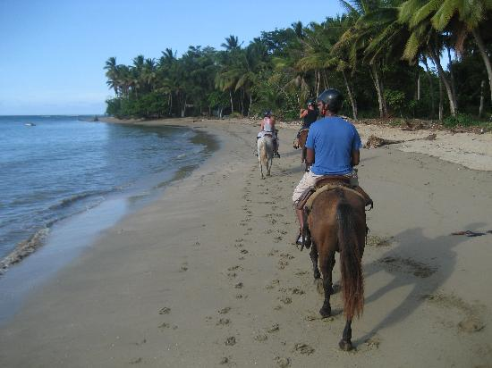 ClubHotel Riu Merengue: Drakes Stables Horse Ride