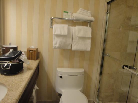 Holiday Inn Montreal Longueuil : salle de bain