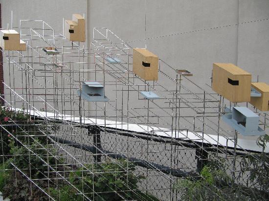 ไฮไลน์: Les oiseaux ne sont pas oubliés !