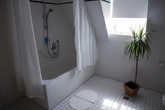 Altstadthotel Molitor: El baño