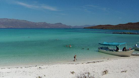 Loreto Bay National Marine Park : ISLA CORONADO