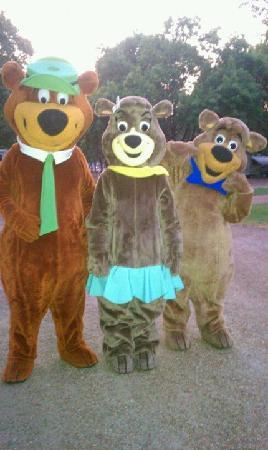 Nashville Jellystone Park: Yogi, Cindy and BooBoo
