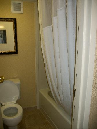 Holiday Inn Express Saugus (Logan Airport): The Shower