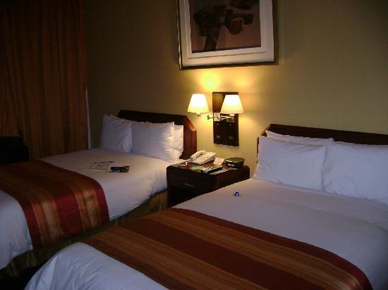 델핀스 호텔 & 카지노 이미지