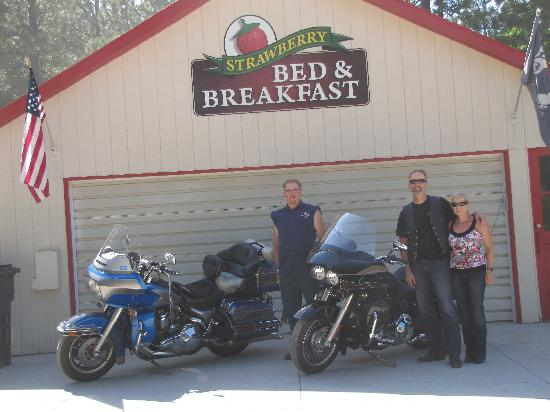 Strawberry Bed and Breakfast: Afternoon ride with Mike as our Tour Guide