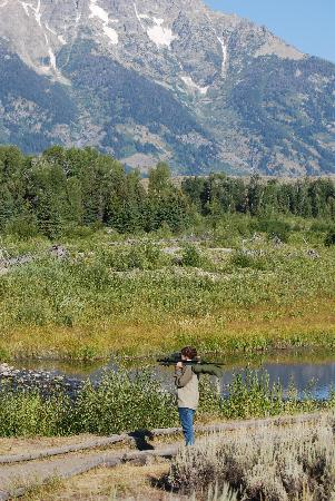 Wildlife Expeditions of Teton Science Schools: our guide Danielle scoping for wildlife