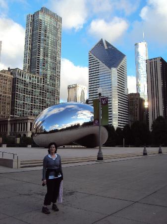 มิลเลนเนียมปาร์ค: The silver bean!!!