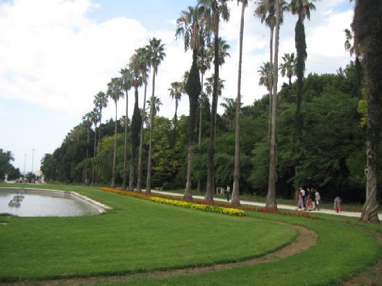 Algiers, Algerije: Jardin d'éssais - Alger - Algérie - 2011 (3 de 6)