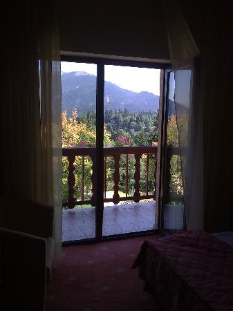 Rozmarin Hotel: Beautiful colours at summer's end, Piatra Mare