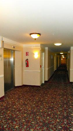 LQ Hotel by La Quinta Cd Juarez Near US Consulate: Hallway 1st floor