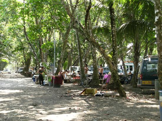 Coconut Grove Oceanfront Cottages: Surfers camping on the beach