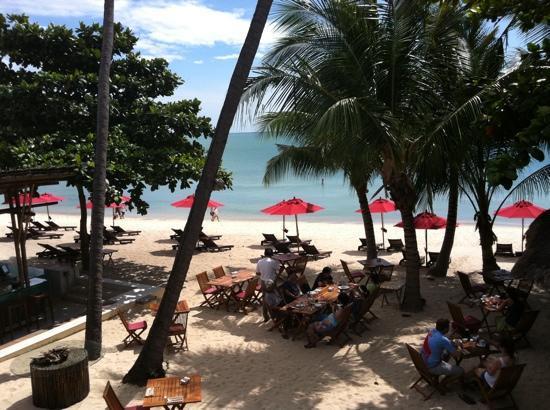 อนันตรา รสานันดา เกาะพะงัน วิลล่า รีสอร์ท แอนด์ สปา: the beach