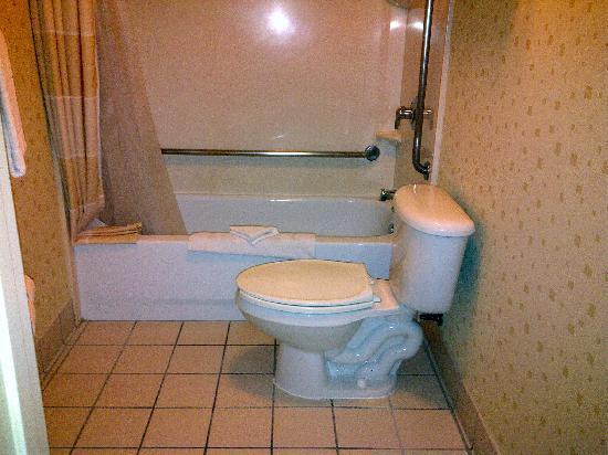 SpringHill Suites Pasadena Arcadia: Bathroom