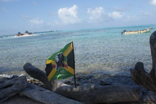 Hotel MS San Luis Village: mis ma isla chica al lado del acuario :)