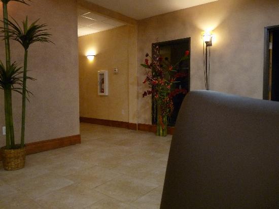 La Quinta Inn & Suites by Wyndham Houston Bush Intl Airpt E照片