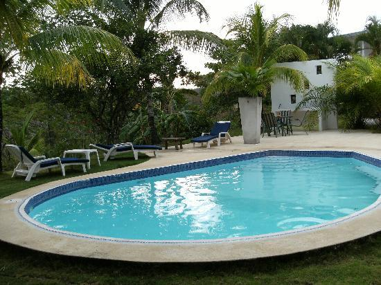 Hotel Horizontes de Montezuma: The pool.