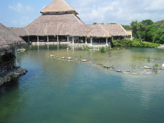 Grand Palladium Colonial Resort & Spa: Adult pool