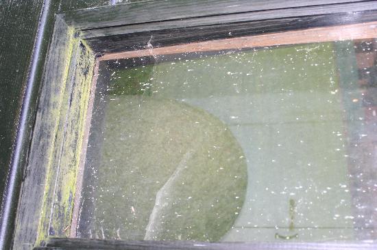 The Turoe Stone: stone as viewed thru the window