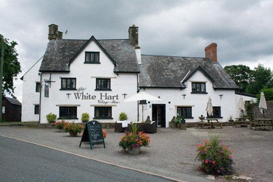 White Hart Village Inn: White Hart Llangybi