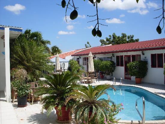 Aruba Harmony Apartments Suites & Hostel: de tropische tuin