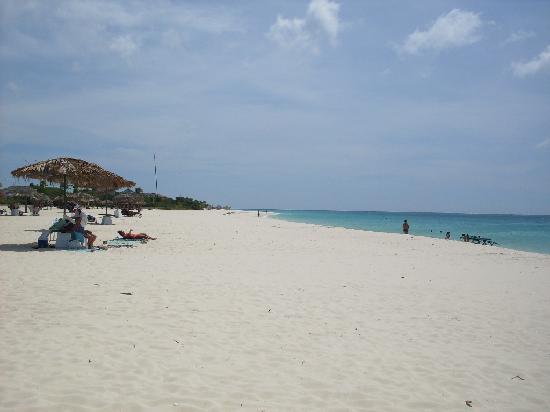 Aruba Harmony Apartments Suites & Hostel: Het strand ( geen zandvoord)