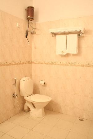 Hotel Hanuwant Palace: washroom