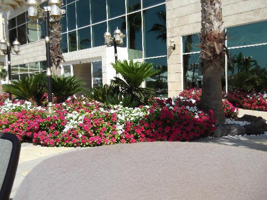 Crystal Palace Luxury Resort & Spa: gardens