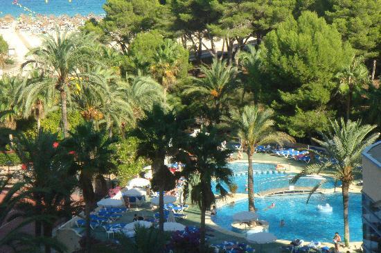 Hotel Club Cala Marsal: Hotelpool, Garten. Cala Marsal im Hintergrund.