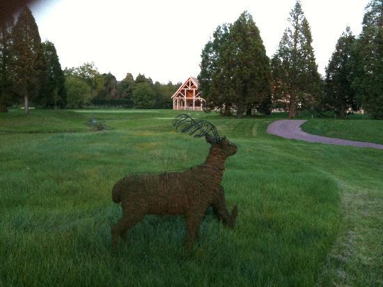Hotel Golf Parc : Depuis l'hôtel, le restaurant au loin, à faire à pied