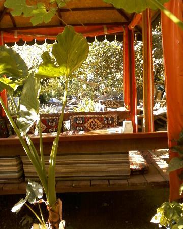 Lemon Restaurant: View 2