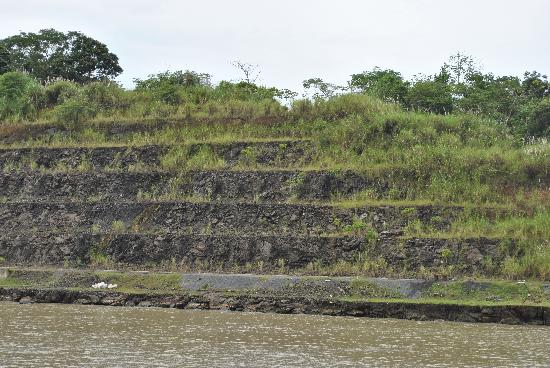 Panama Marine Adventures - Day Tours: The sides of the canal- notice the natural greenery