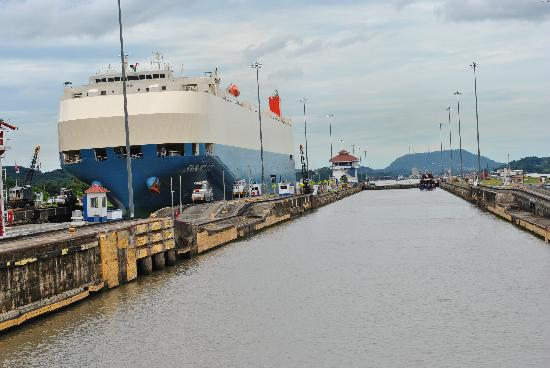 Panama Marine Adventures - Day Tours: Huge ships in the canal