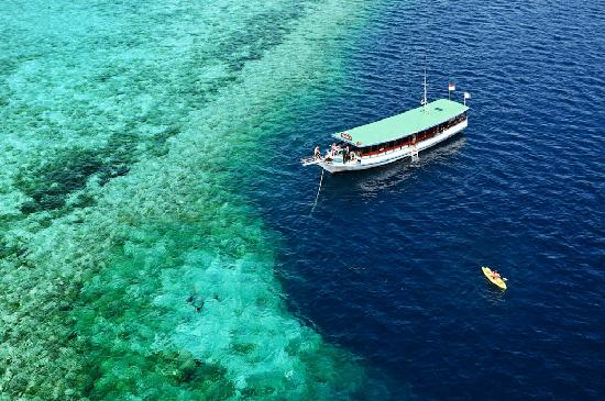 Wakatobi Dive Resort: Scuba dive in paradise