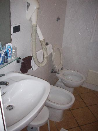 Hotel Europeo & Flowers : Bathroom. Well equipped.