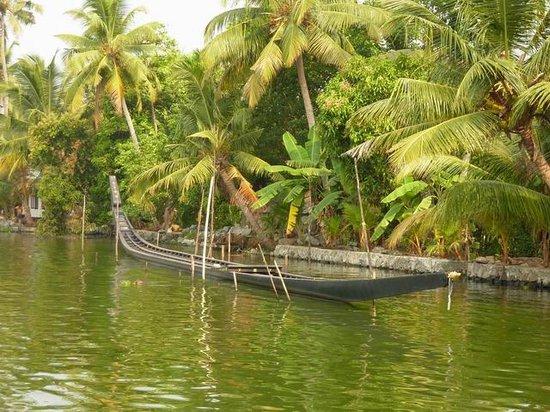 """Kerala Backwaters: Un """"snake-boat"""" dans les Backwaters"""