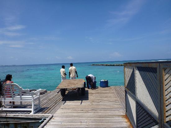 Vivanta by Taj Coral Reef Maldives: CAUGHT YOU!