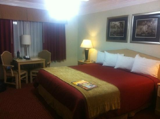 Best Western Tradewinds: Our Beautiful Room.