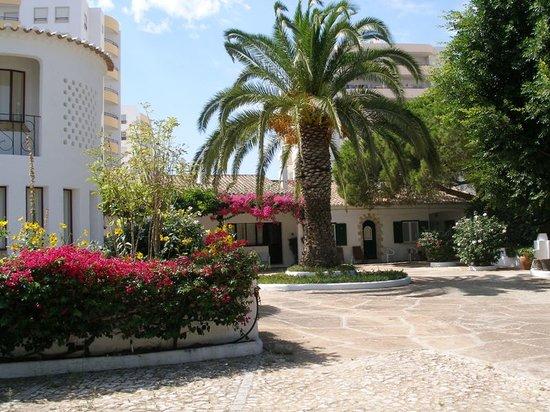Quinta Da Ameijeira : Outside View