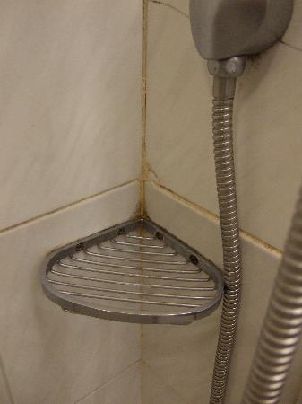 ซีซ่าร์พาร์ค โฮเต็ล: Dirty tiles
