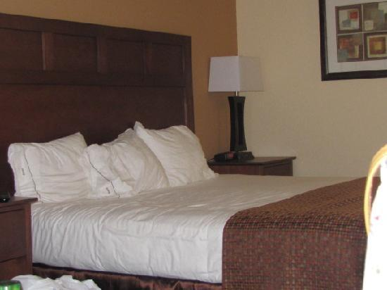 Holiday Inn Express Hotel & Suites Mount Airy South: The King Bed