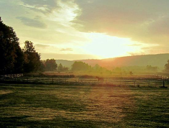 Mountain Horse Farm B&B and Wellness Retreat: beautiful sunrise