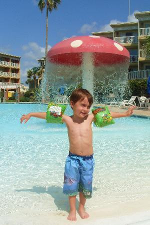 The Victorian Condominiums : My little man at the pool
