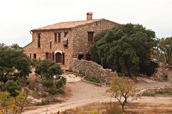 Casa rural Mas Del Salin : Mas del Salín
