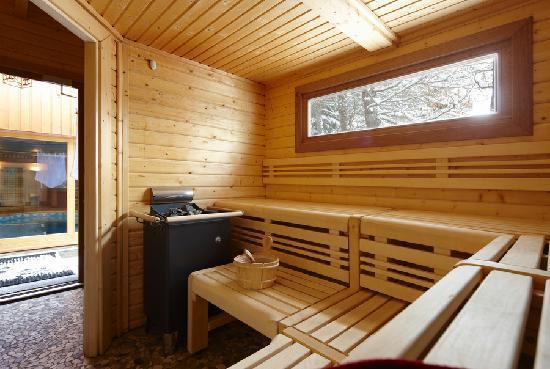 Hotel Chalet Mounier : Le sauna