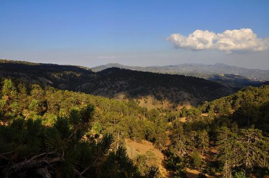 Troodos, Cyprus: A view from the room