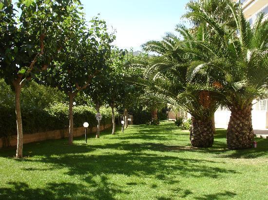 Ventura Park: Garden