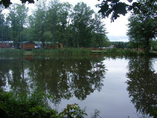 Bayley's Camping Resort: Pond next to campsite