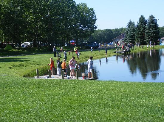 W camping area picture of bayley 39 s camping resort for Fishing resorts near me