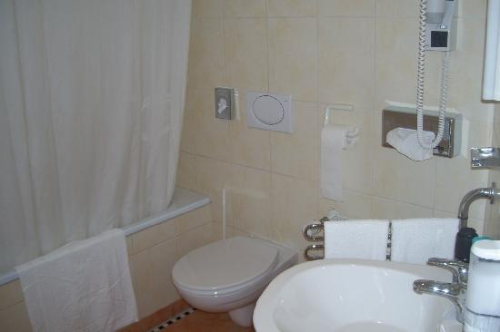 Hotel Sachsenhof: Baño impecable